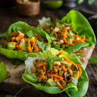 Spiced ground turkey lettuce wraps {avocado + peanuts}